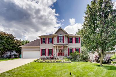 Warrenville Single Family Home New: 28w351 Warrenville Road