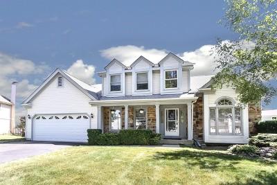 Schaumburg Single Family Home New: 2224 Broadway Lane