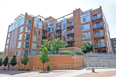 Evanston Rental New: 1720 Oak Avenue #501