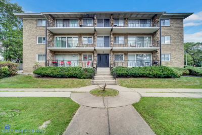 Alsip Condo/Townhouse New: 3900 West 115th Place #3-NE