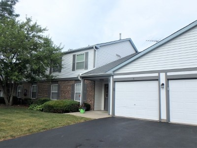 Wauconda Condo/Townhouse For Sale: 270 Crestview Drive #B