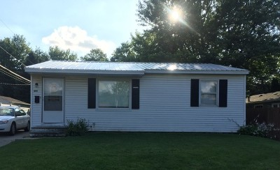 Ogle County Single Family Home For Sale: 416 South 9th Street