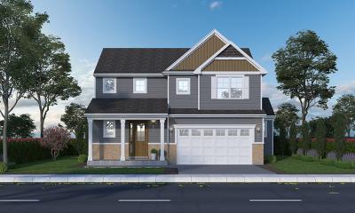 Plainfield Single Family Home New: 13649 Sanibel Street