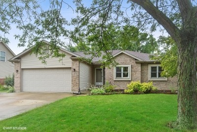 Plainfield Single Family Home New: 5208 Sunmeadow Drive