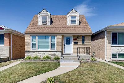 Chicago Multi Family Home New: 3316 North Panama Avenue