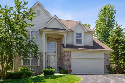 Vernon Hills Single Family Home For Sale: 1876 Olympic Drive