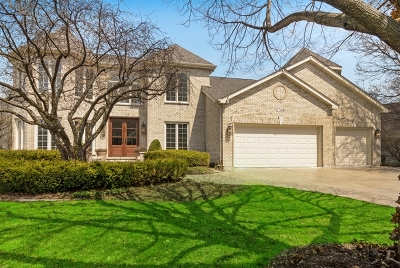Naperville Single Family Home For Sale: 1764 Chadwicke Circle