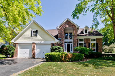 Vernon Hills Single Family Home For Sale: 548 Williams Way