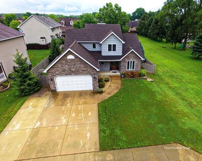 Wilmington IL Single Family Home New: $335,000