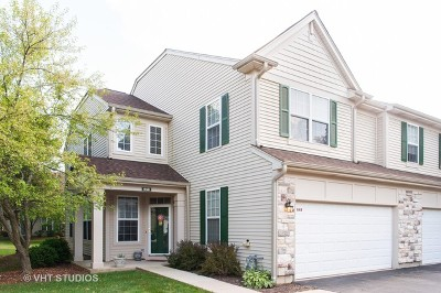 Grayslake Condo/Townhouse For Sale: 649 Shakespeare Drive