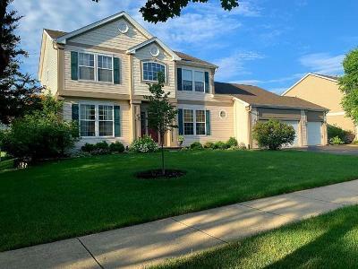 Aurora Single Family Home New: 1001 Vineyard Lane