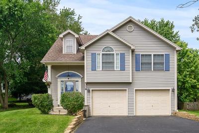 Elburn Single Family Home New: 316 East Shannon Street