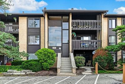 Willowbrook Condo/Townhouse New: 6182 Pinewood Court #207