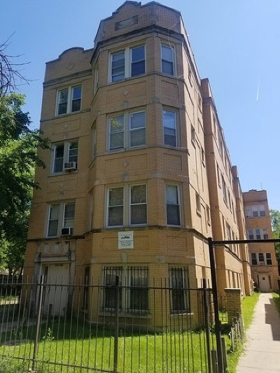 Chicago Multi Family Home New: 19 North Pine Avenue