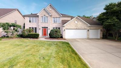 Naperville Single Family Home New: 24w615 Eugenia Drive