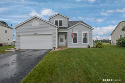 Plainfield Single Family Home New: 2307 Willow Lakes Drive