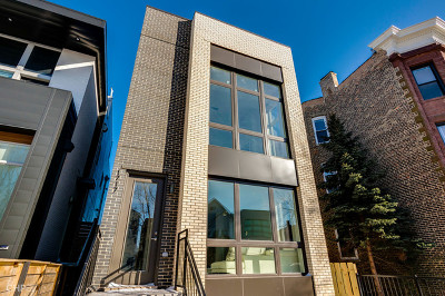 Chicago Condo/Townhouse New: 1717 North Campbell Avenue #1