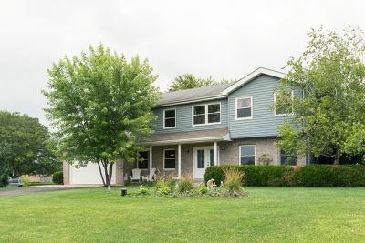 New Lenox Single Family Home New: 18761 Spring Creek Street