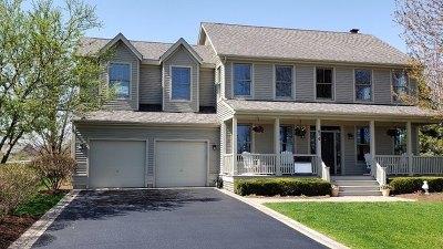 Grayslake Single Family Home For Sale: 574 Bluestem Lane