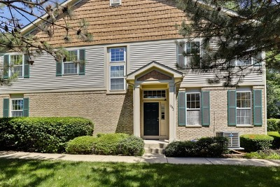 Vernon Hills Condo/Townhouse For Sale: 1282 Georgetown Way
