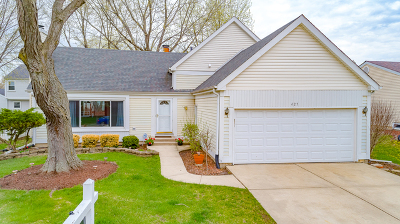 Schaumburg Single Family Home New: 427 North Walnut Lane