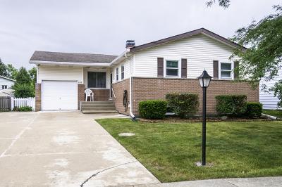 Hickory Hills Single Family Home New: 9149 Beechnut Road