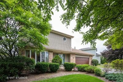 Roselle Single Family Home For Sale: 40 Rodenburg Road