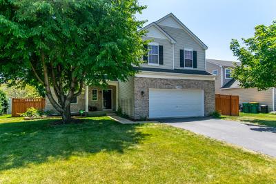 Plainfield Single Family Home New: 5202 Pontigo Glen Drive