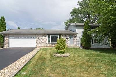 Hoffman Estates Single Family Home New: 675 Evanston Street