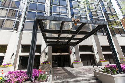 Rental New: 50 East Bellevue Place #2702