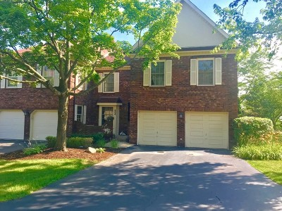 Glen Ellyn Condo/Townhouse New: 854 Seminary Circle