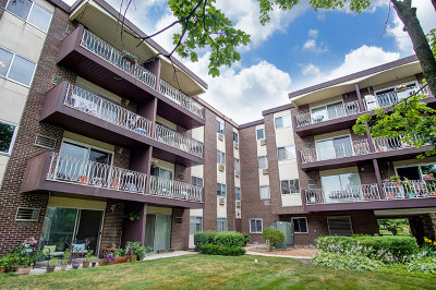 Lombard Condo/Townhouse New: 1311 South Finley Road #203