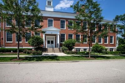 Libertyville Condo/Townhouse For Sale: 154 School Street #T6