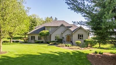 Bartlett Single Family Home New: 8n206 Naperville Road