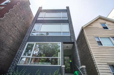 Chicago Condo/Townhouse New: 874 North Marshfield Avenue #3