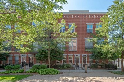 Chicago IL Condo/Townhouse New: $359,900
