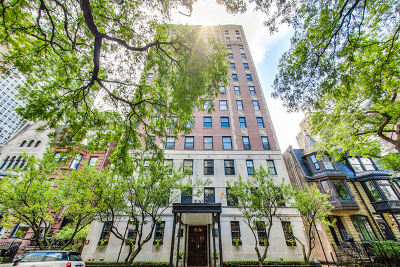 Condo/Townhouse New: 73 East Elm Street #11A