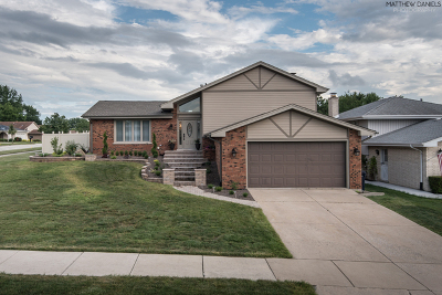 Orland Park Single Family Home For Sale: 8419 Flamingo Circle