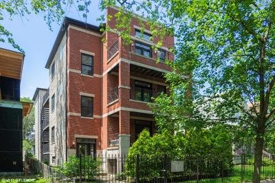 Chicago IL Condo/Townhouse New: $419,000