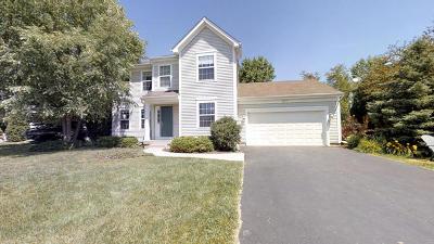 Lake Villa Single Family Home For Sale: 918 Park Avenue