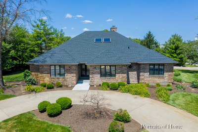 Naperville Single Family Home New: 24050 Brancaster Drive