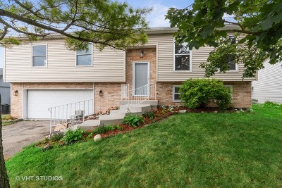 Carol Stream Single Family Home New: 980 Tioga Court