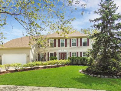 Oswego Single Family Home New: 494 Waubonsee Circle