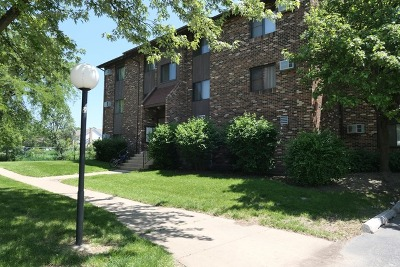 Woodridge Multi Family Home New: 7809 Woodward Avenue