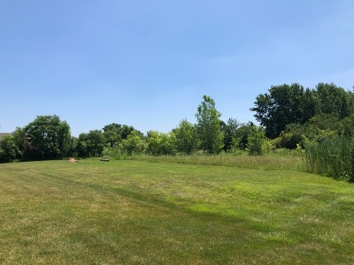 Homer Glen Residential Lots & Land For Sale: 18035 Conlee Drive