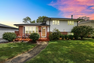 Chicago Ridge Single Family Home New: 6611 Ridge Drive