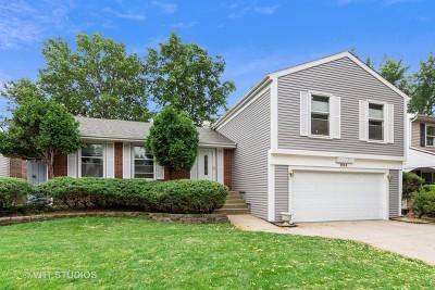 Buffalo Grove Single Family Home New: 884 Knollwood Drive