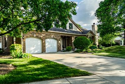 Buffalo Grove Condo/Townhouse For Sale: 371 Satinwood Terrace