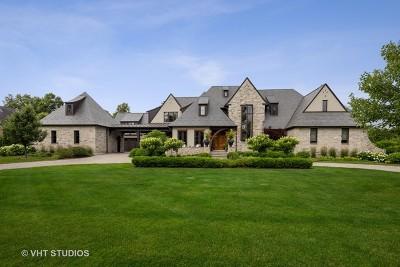 Burr Ridge IL Single Family Home New: $3,750,000
