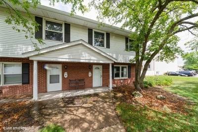 Aurora Condo/Townhouse New: 410 South Frontenac Street #3